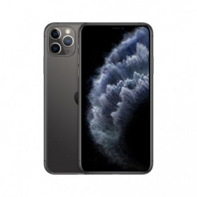 Apple iPhone 11 Pro Max 64 Go Gris sideral - Grade C